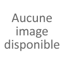 Chouettes / Hiboux
